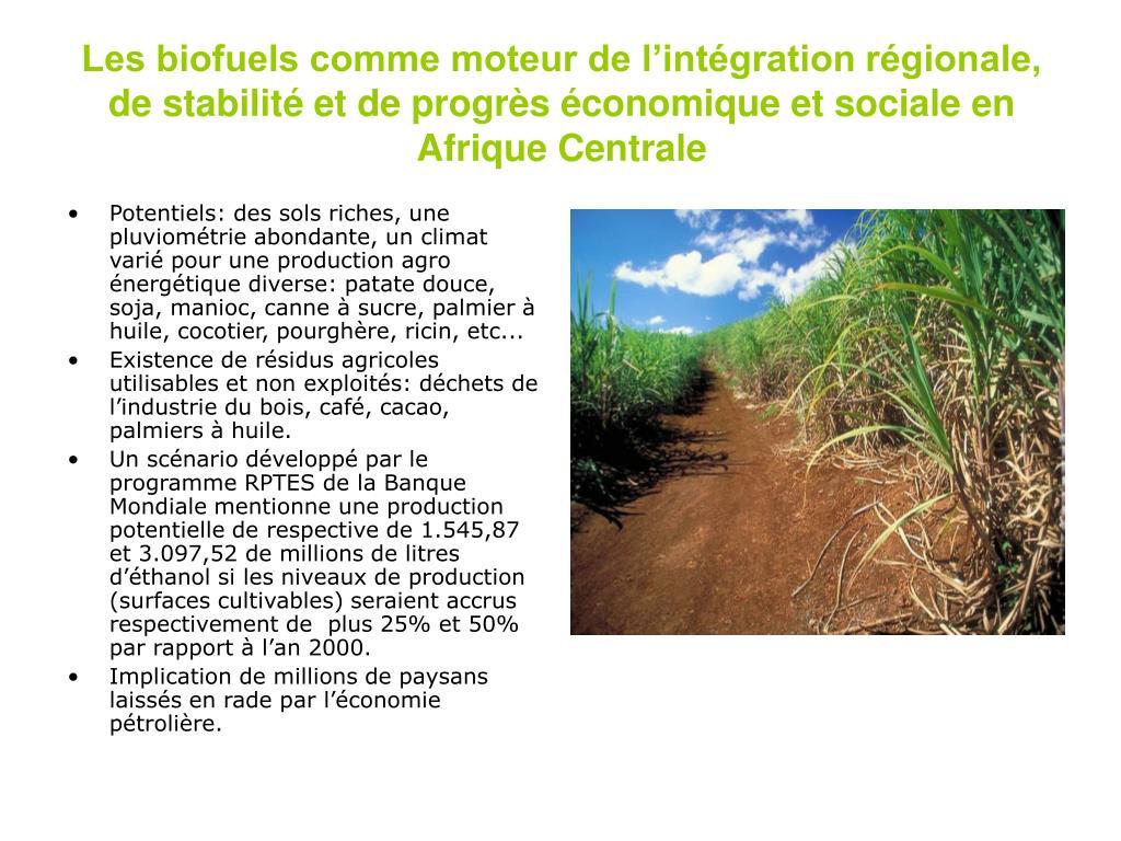 Les biofuels comme moteur de l'intégration régionale, de stabilité et de progrès économique et sociale en Afrique Centrale