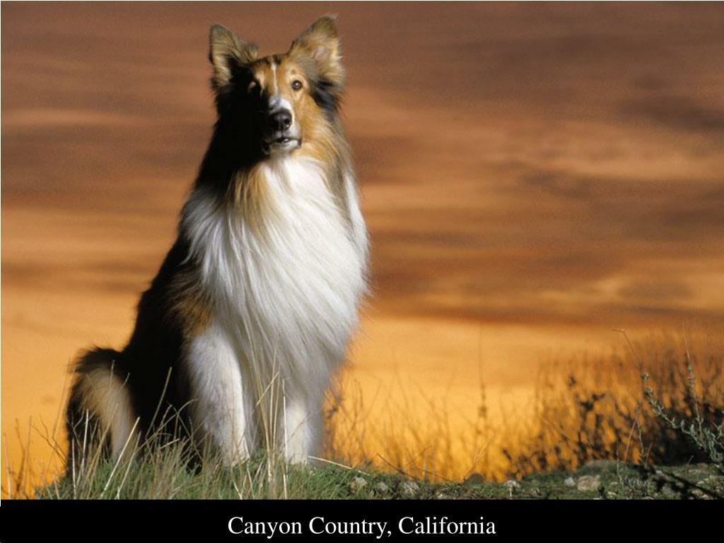 Canyon Country, California