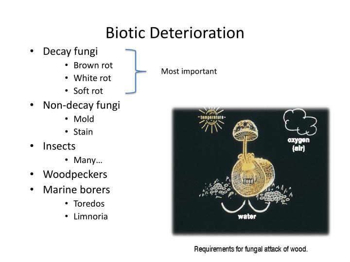 Biotic Deterioration
