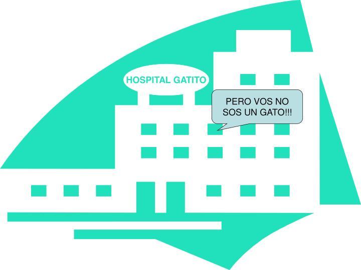 HOSPITAL GATITO