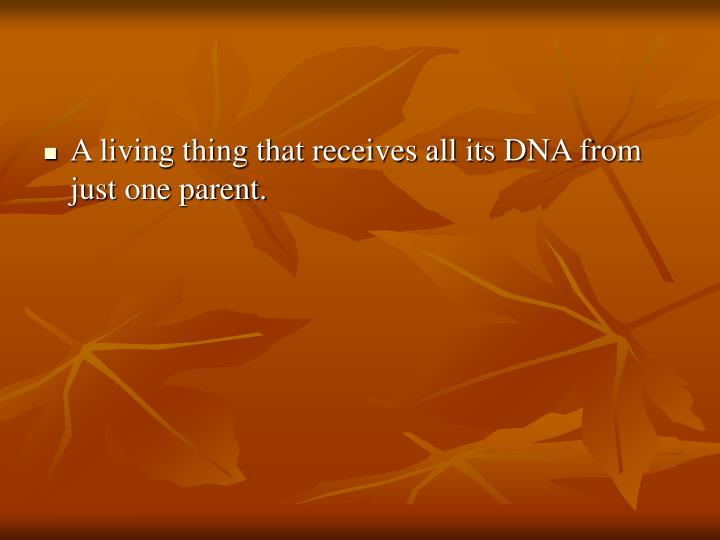 A living thing that receives all its DNA from just one parent.