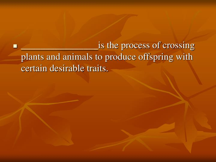 ________________is the process of crossing plants and animals to produce offspring with certain desirable traits.