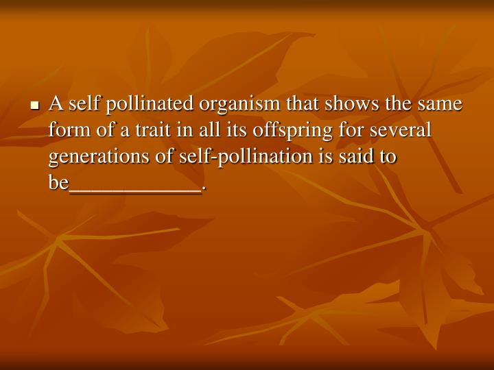 A self pollinated organism that shows the same form of a trait in all its offspring for several generations of self-pollination is said to be____________.