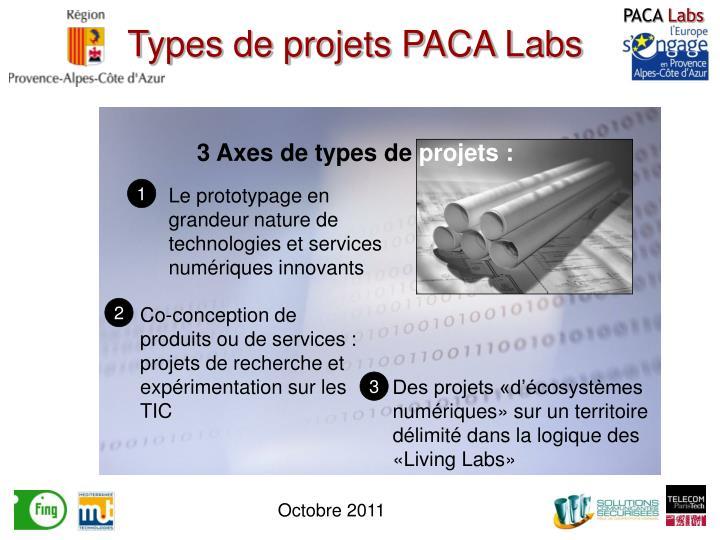 Types de projets PACA Labs