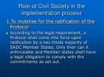role of civil society in the implementation process