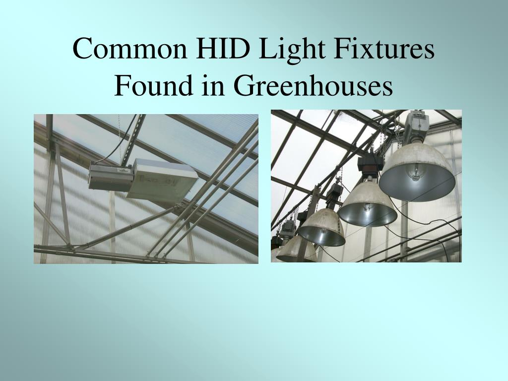 Common HID Light Fixtures Found in Greenhouses