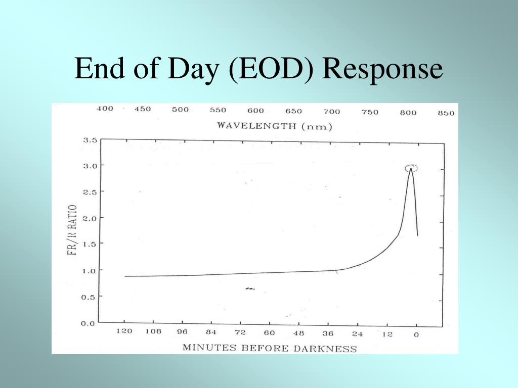 End of Day (EOD) Response