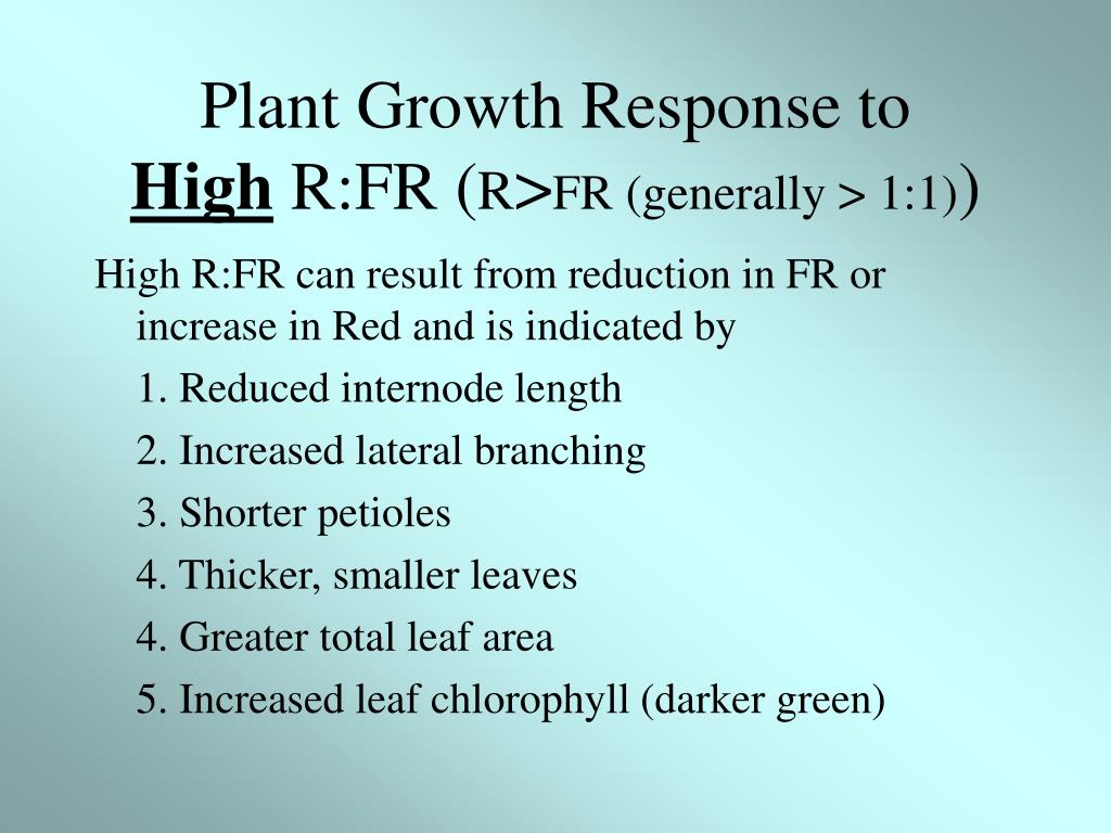 Plant Growth Response to