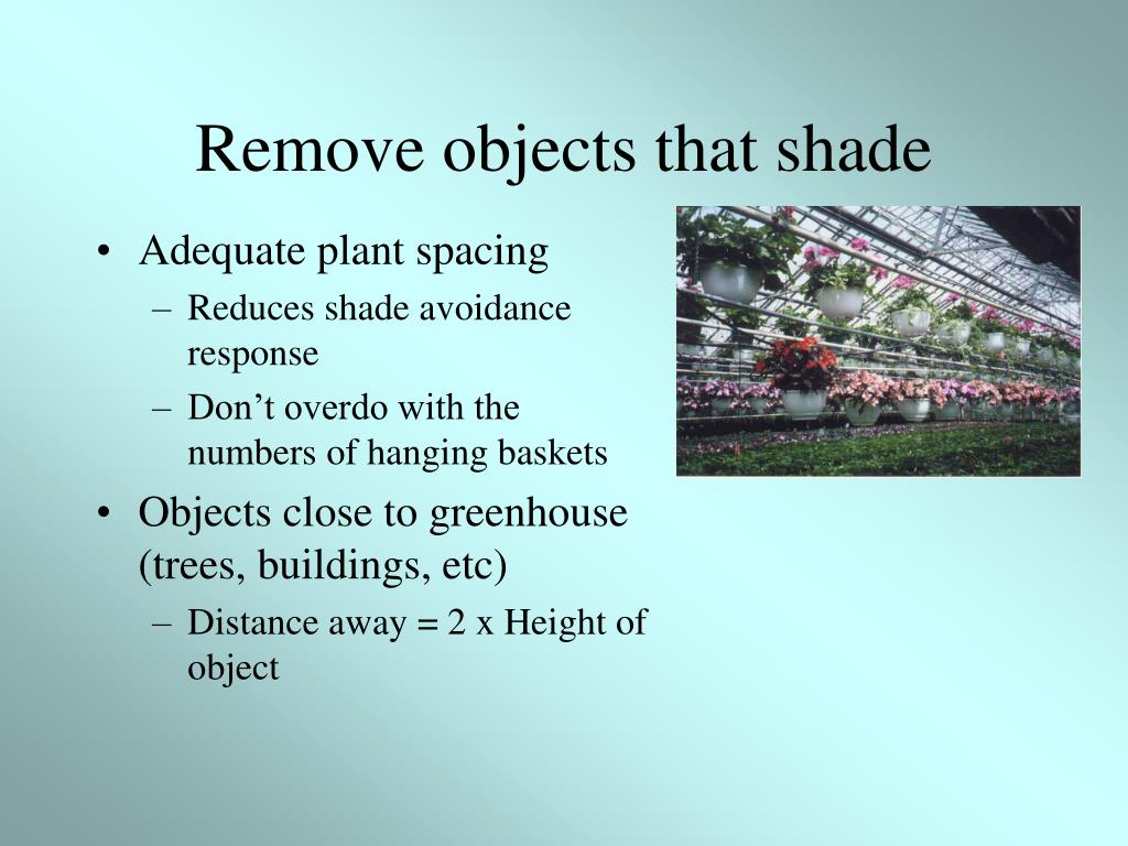 Remove objects that shade