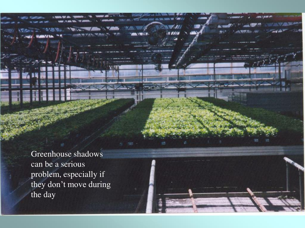 Greenhouse shadows can be a serious problem, especially if they don't move during the day