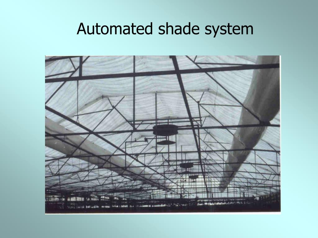 Automated shade system