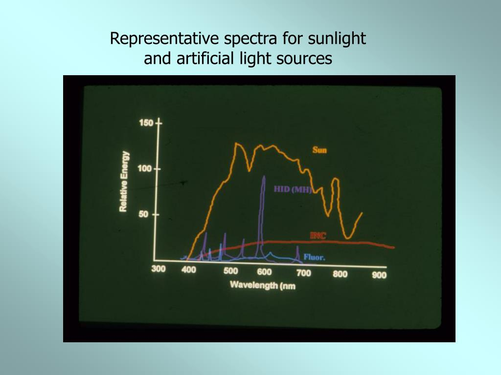 Representative spectra for sunlight and artificial light sources