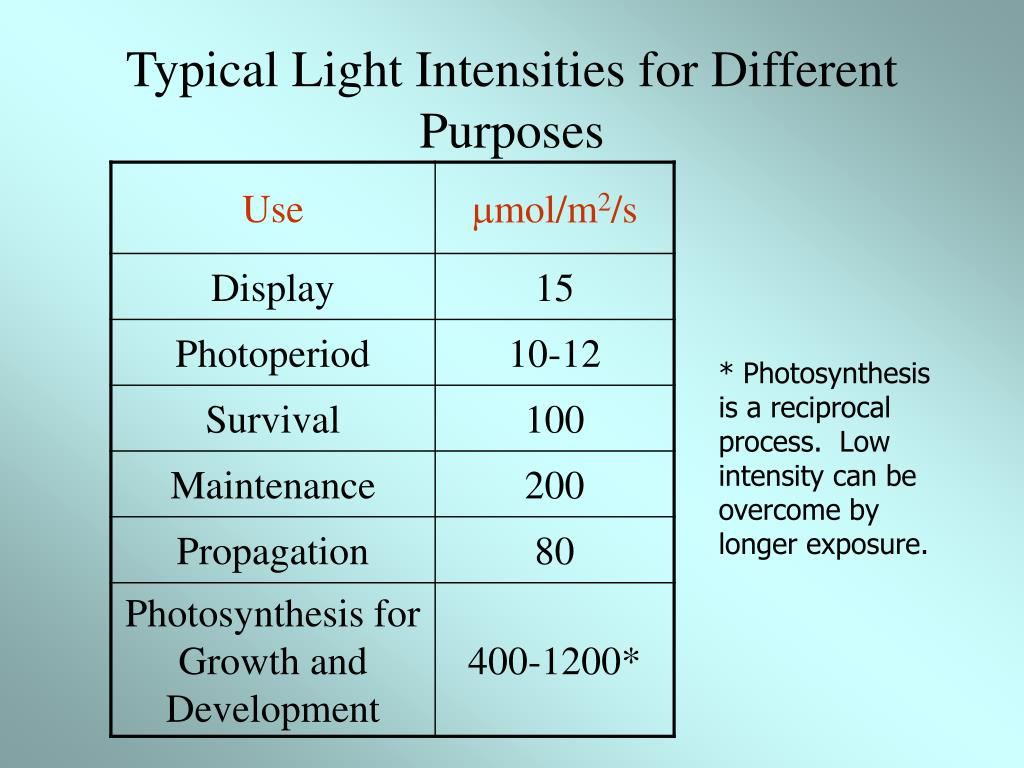 Typical Light Intensities for Different Purposes