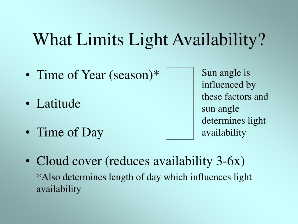 What Limits Light Availability?