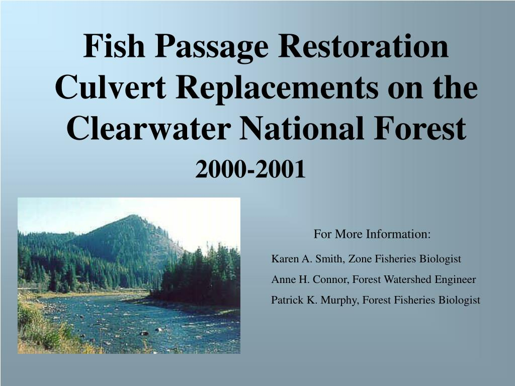 Fish Passage Restoration Culvert Replacements on the Clearwater National Forest