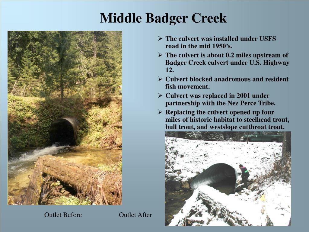 Middle Badger Creek