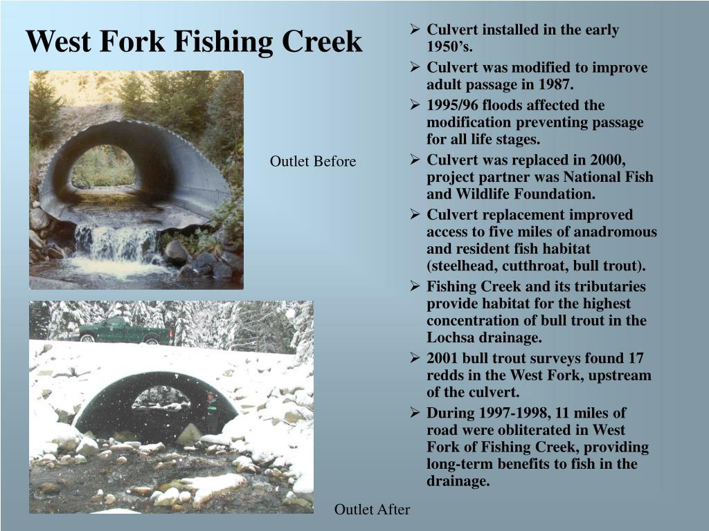 West Fork Fishing Creek