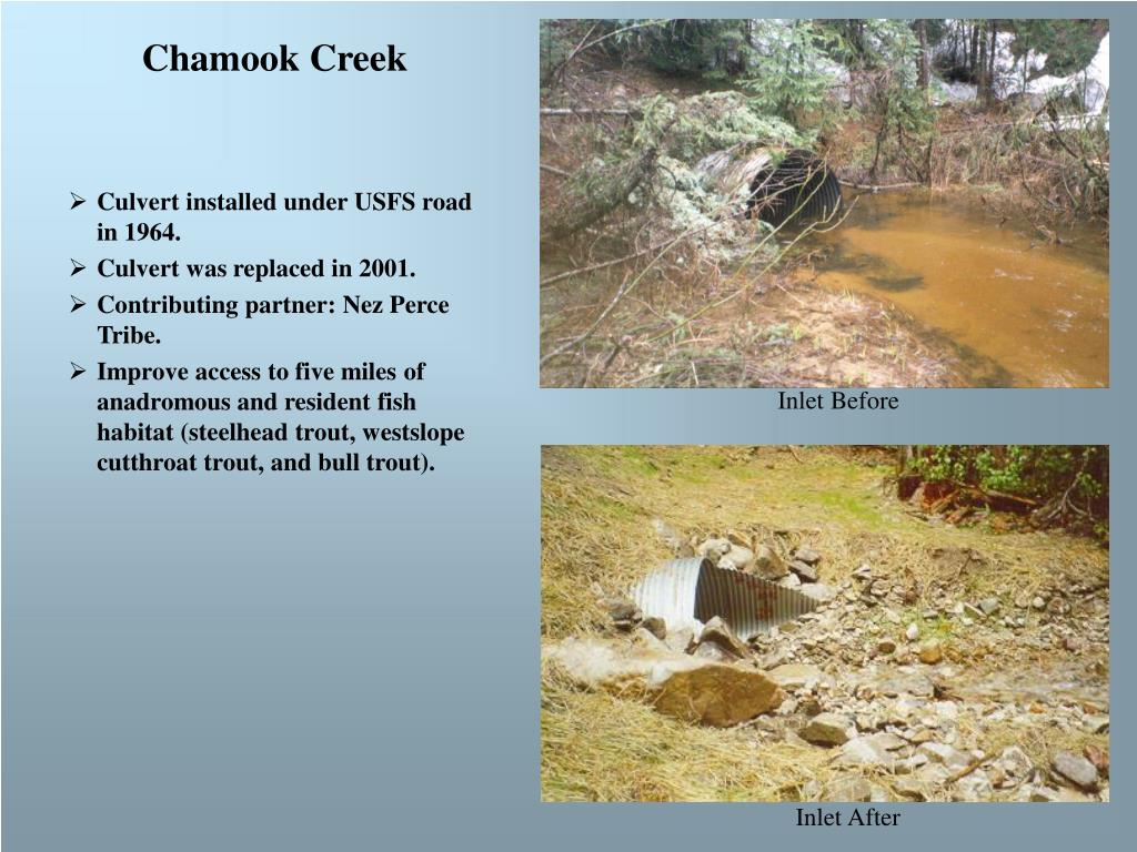 Chamook Creek