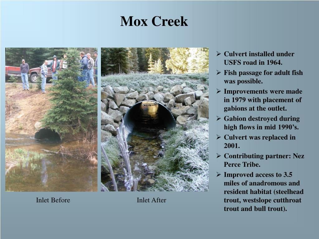 Mox Creek