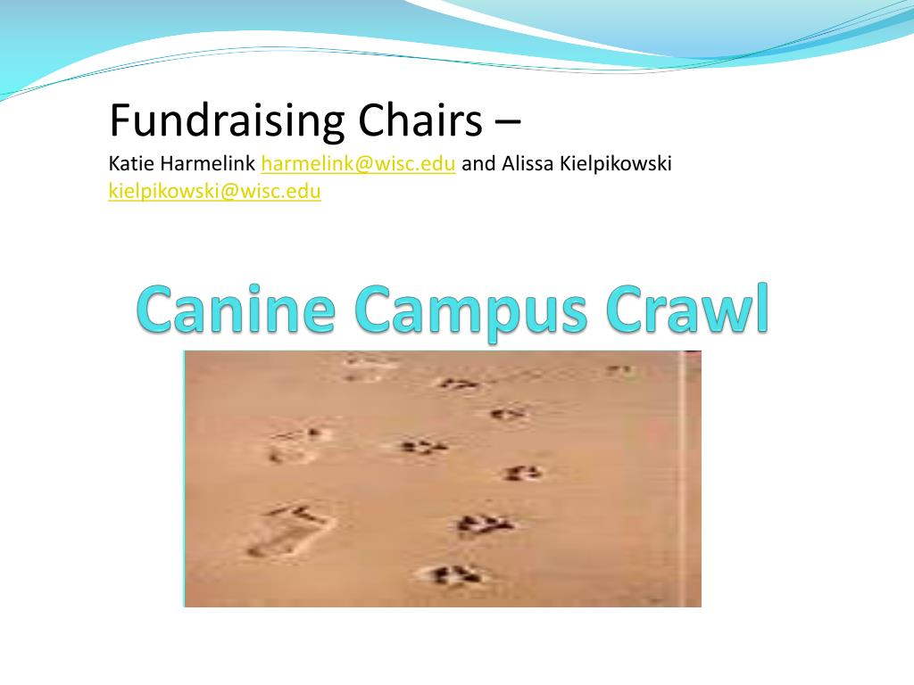 Fundraising Chairs –