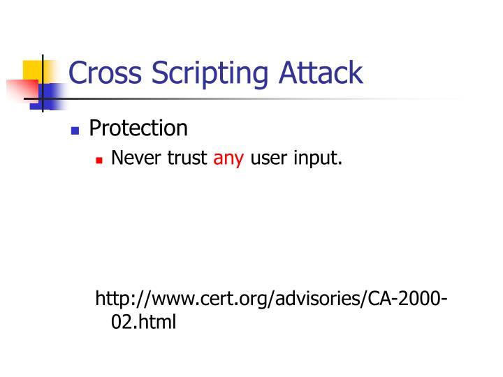 Cross Scripting Attack