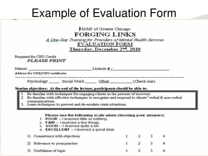 Example of Evaluation Form