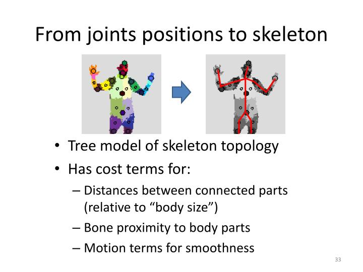 From joints positions to skeleton