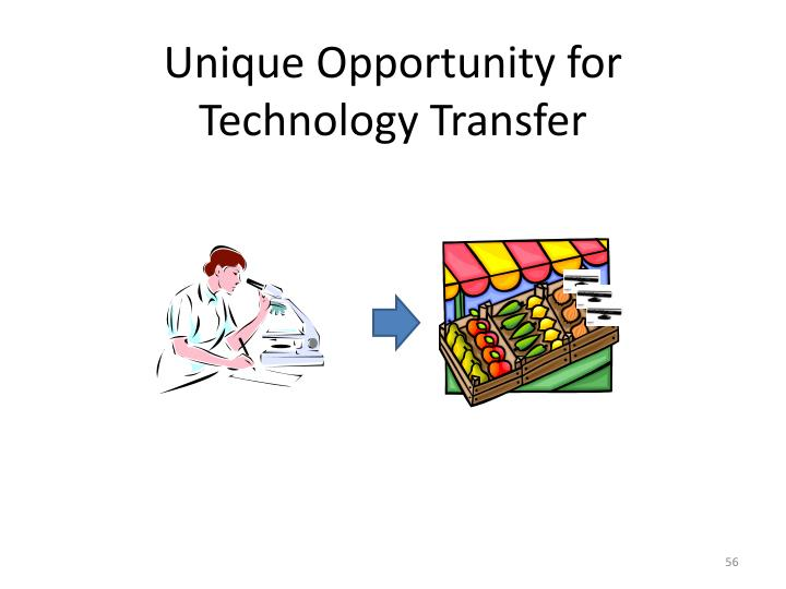Unique Opportunity for