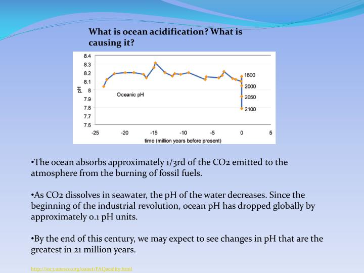 What is ocean acidification? What is causing it?