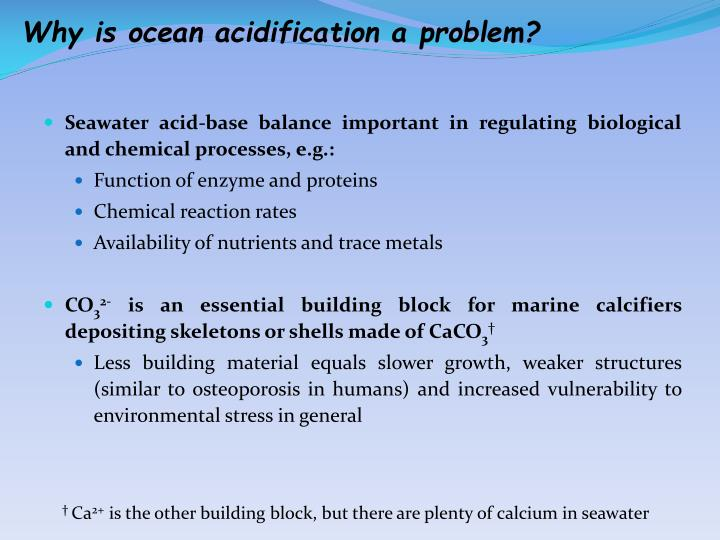 Why is ocean acidification a problem?