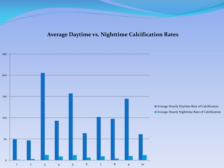 Average Daytime vs. Nighttime Calcification Rates