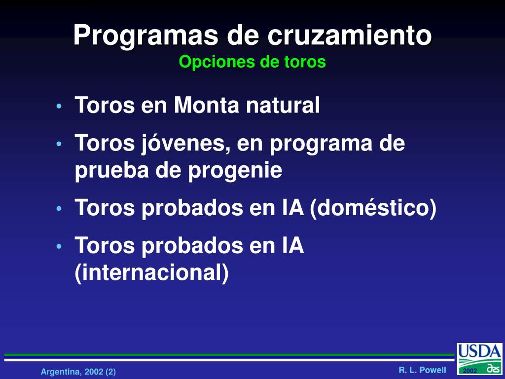 Programas de cruzamiento
