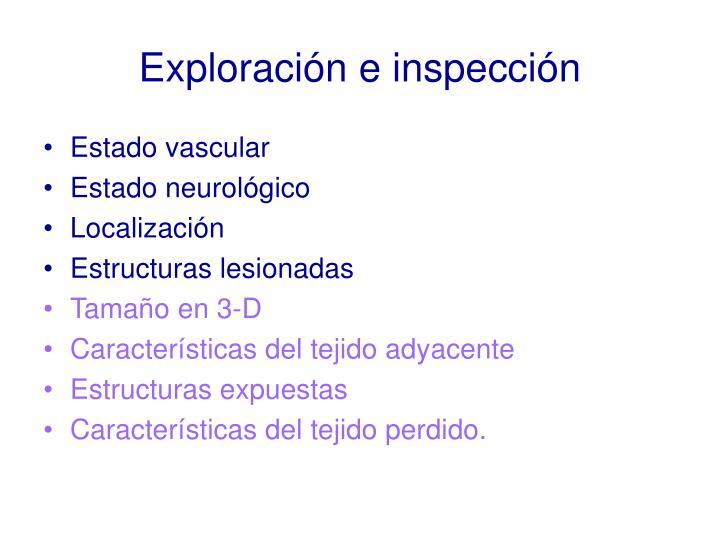Exploracin e inspeccin