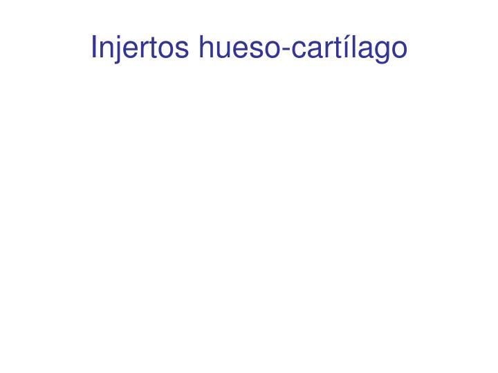 Injertos hueso-cartlago