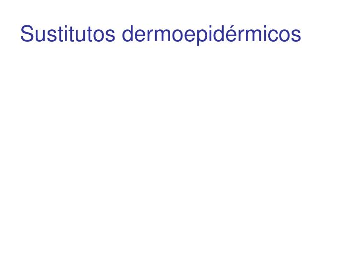 Sustitutos dermoepidrmicos