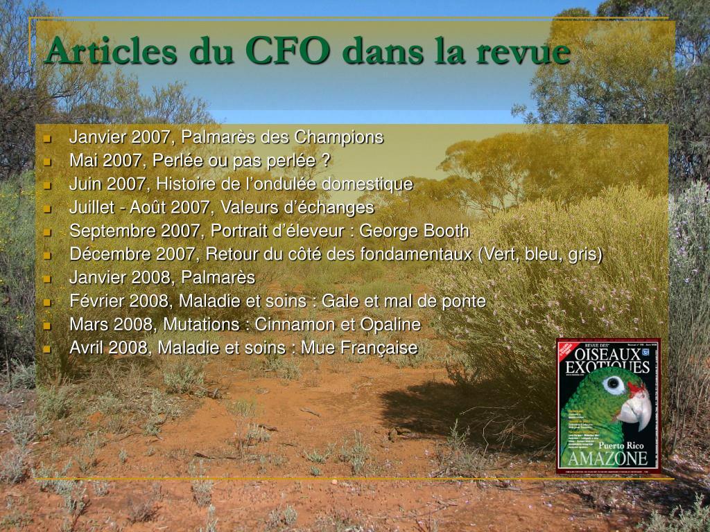 Articles du CFO dans la revue
