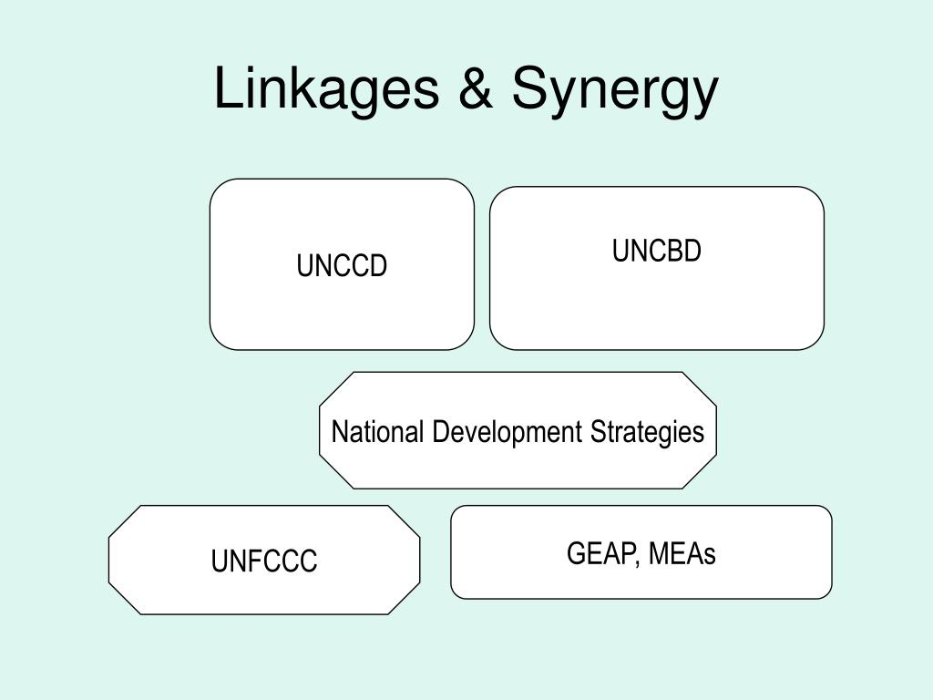Linkages & Synergy