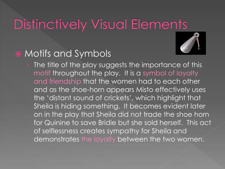 Distinctively Visual Essay Sample