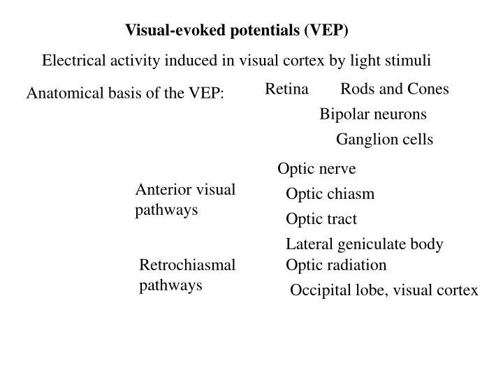Visual-evoked potentials (VEP)