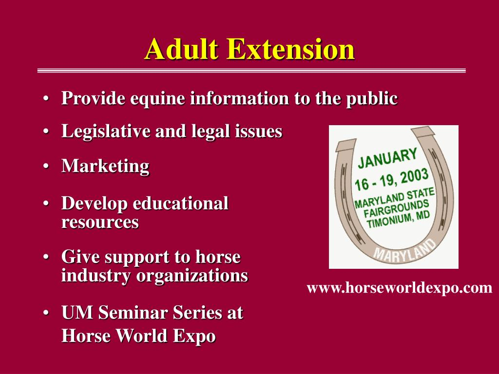 Adult Extension