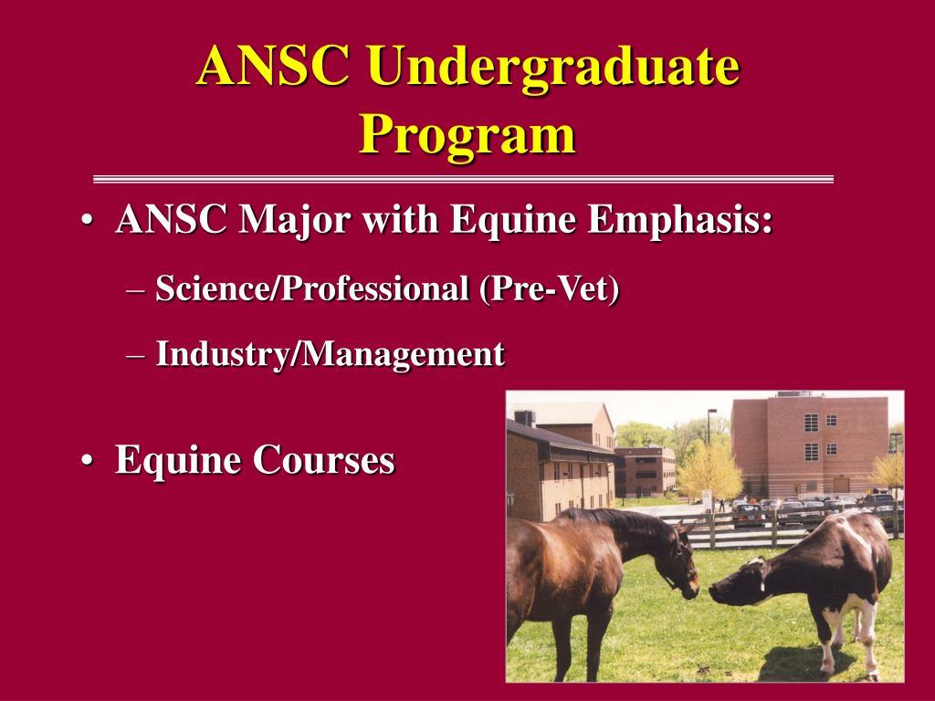 ANSC Undergraduate Program