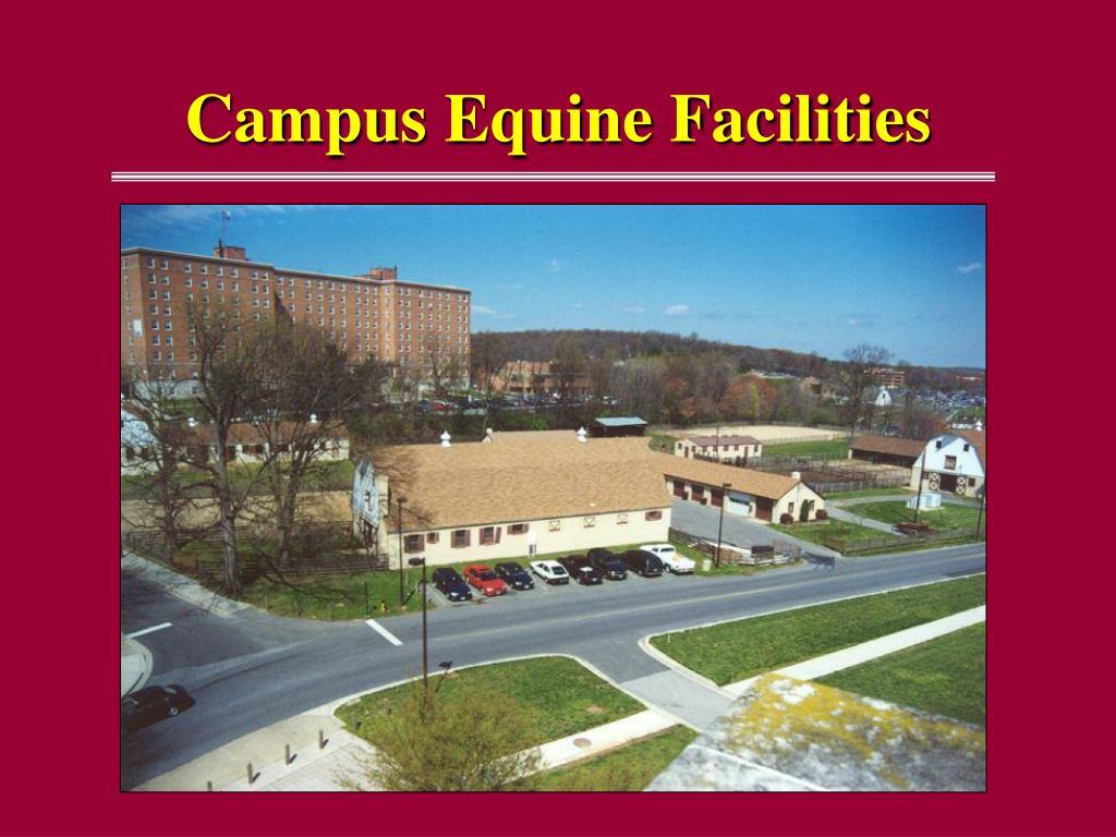 Campus Equine Facilities