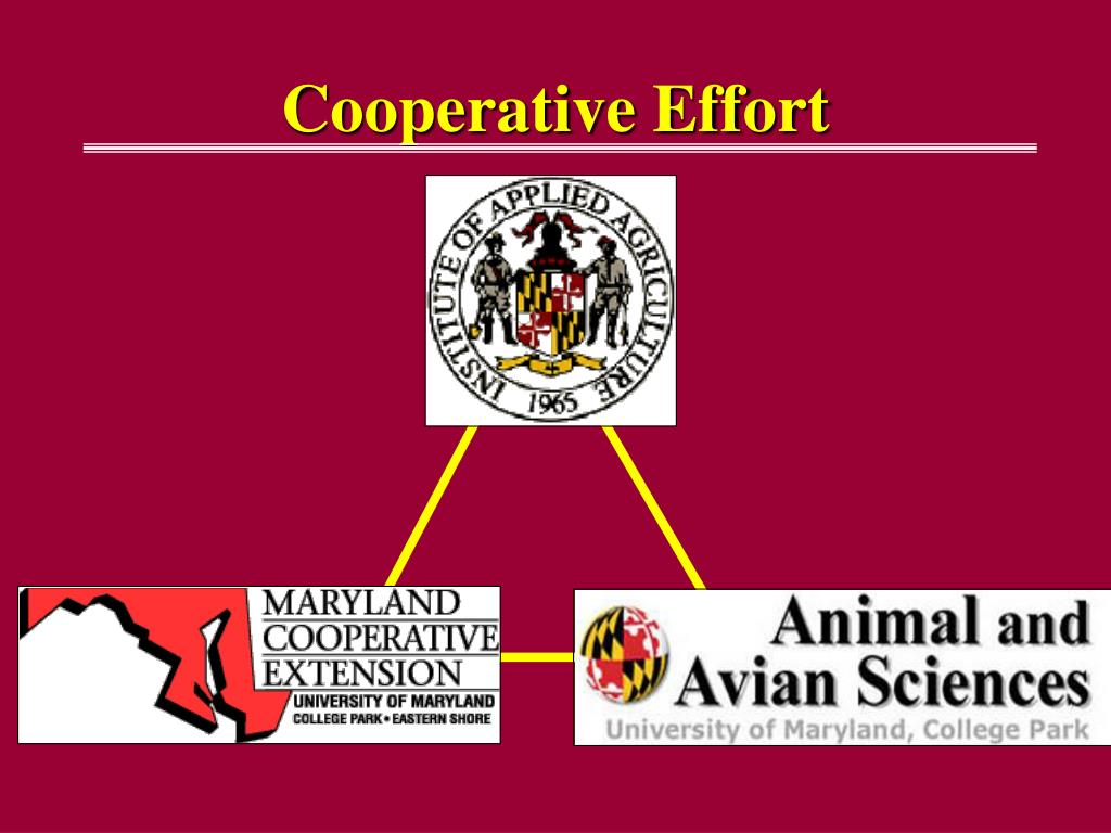 Cooperative Effort