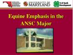 equine emphasis in the ansc major