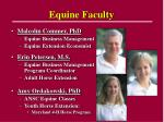 equine faculty