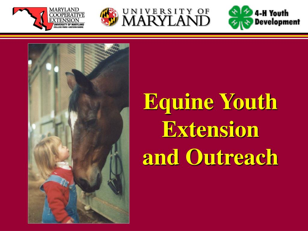 Equine Youth Extension