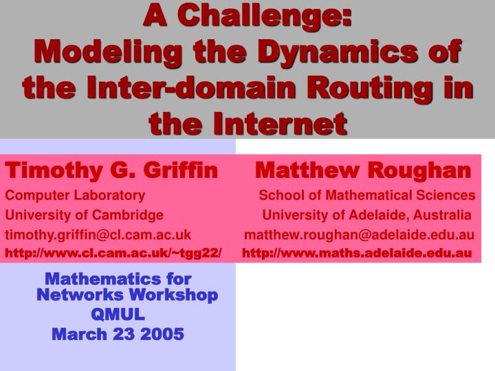 A challenge modeling the dynamics of the inter domain routing in the internet