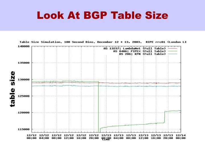 Look At BGP Table Size