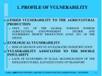 1 profile of vulnerability