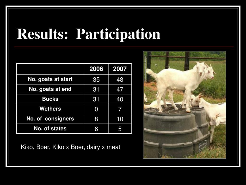 Results:  Participation